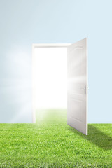 Open door with bright light and green meadow