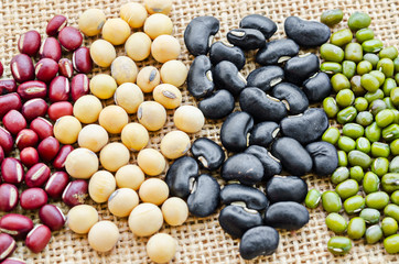 Different kinds of beans.