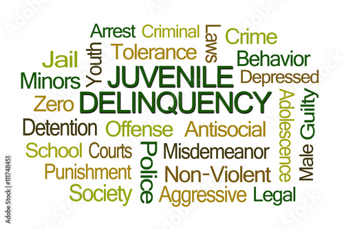 an analysis of aggresiveness of juvenile delinquents