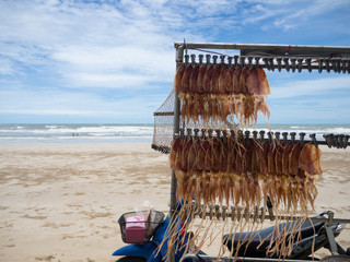 squid dried shop in Thailand