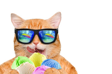 Cat wearing sunglasses relaxing in the sea background. Red cat eats ice cream. Isolated on white.