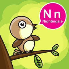 N Nightingale color cartoon and alphabet for children to learnin