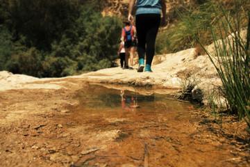 Group of hikers walking in rocky desert trail