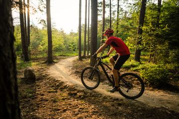 Mountain biker riding cycling in summer forest Fototapete