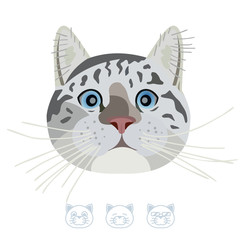 Cartoon tabby cat portrait. Vector Illustration.