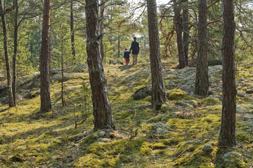 Parent and child walking in the forest, Sweden.