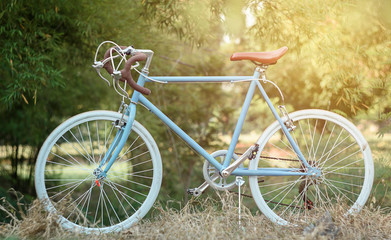 beautiful image with sport vintage bicycle at garden ; vintage f