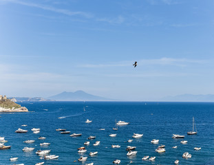 Yachts and Ocean Landscape