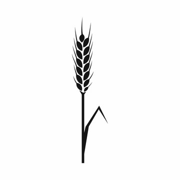 Rye ear icon, simple style