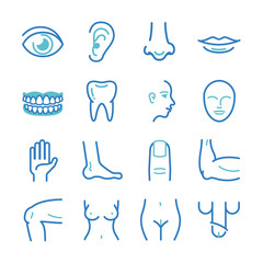 Human body - medical icons set
