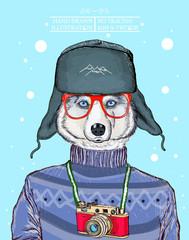 Fashion animal illustration, husky dog hipster animal