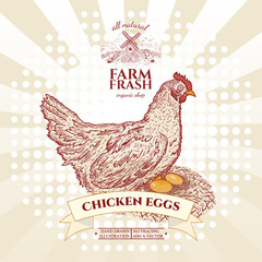 Farm fresh chicken eggs, hen in nest with eggs vector