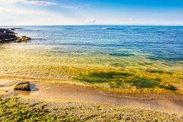 stones and seaweed on sandy coast of the sea