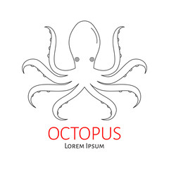 Octopus vector flat line illustration isolated. Seafood line icon.