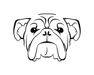 Dog Breed Line Art Logo - Bulldog