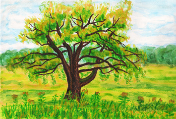 Willow tree, painting
