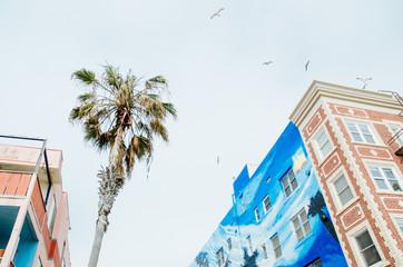 Street scene from Venice beach