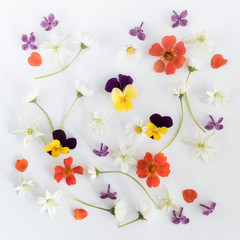 Colourful bright pattern made of flowers. Flat lay, top view