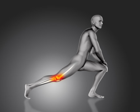 3D male figure in stretching pose with knee bone highlighted