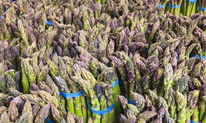 Fresh organic asparagus at a local farmers market.