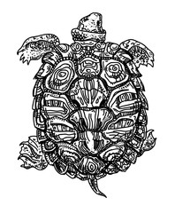 Swimming turtle with ornamental shell. Sketch, black on white, isolated. Vector illustration.