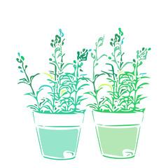 観葉植物、単色、緑、造花、花、植木鉢、癒し、植物、葉、女性、リフレッシュ、リラックス、育てる、
