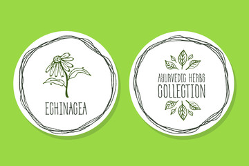 Ayurvedic Herb - Product Label with Echinacea