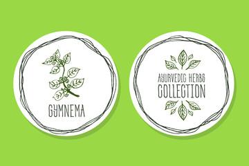 Ayurvedic Herb - Product Label with Gymnema sylvestre