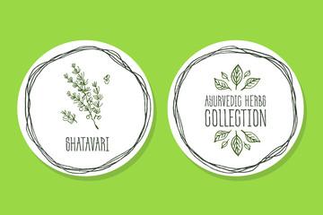 Ayurvedic Herb - Product Label with  Shatavari