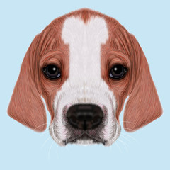 Illustrated Portrait of English Pointer puppy.
