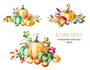 Colorful autumn collection with fall leaves,branches,berry,blackberry,mushroom,pumpkins,walnut,pomegranate,prunes and more.3 beautiful bouquet for your own design.Autumn harvest.For your unique create