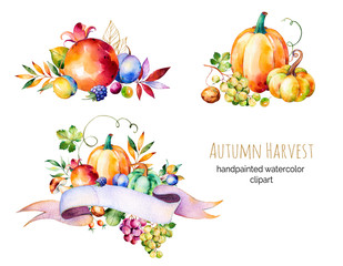 Colorful autumn collection with fall leaves,branches,berry,blackberry,mushroom,pumpkins,walnut,grapes vine,prunes and more.3 beautiful bouquet for your own design.Autumn harvest.For your unique create