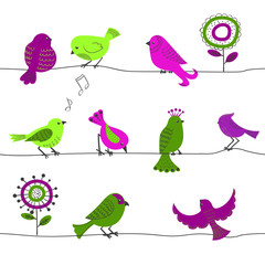Seamless pattern with cute birds in green and purple. Cartoon birds and abstract flowers isolated on white. Vector background.