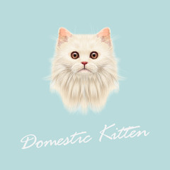 Vector Illustrated portrait of Domestic cat.