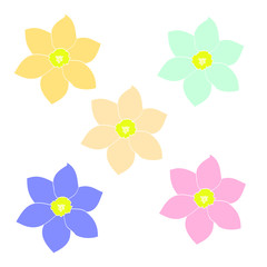 A set of simple flowers