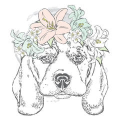 Cute dog in a wreath of roses . Vector illustration. Design element for printed products or prints on clothes and accessories .