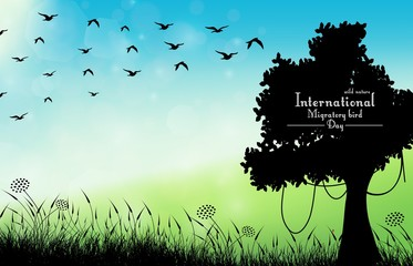 Field of grass background with silhouette tree and flying birds