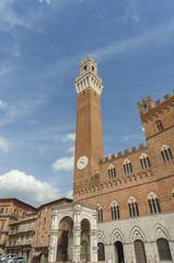 Fototapete - Piazza del Campo, Siena, Tuscany, Italy.