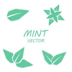 Vector flat mint icons set