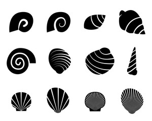 Set of shell in silhouette tattoo style