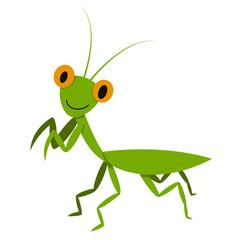 Mantis, Mantodea grasshopper in flat style, vector