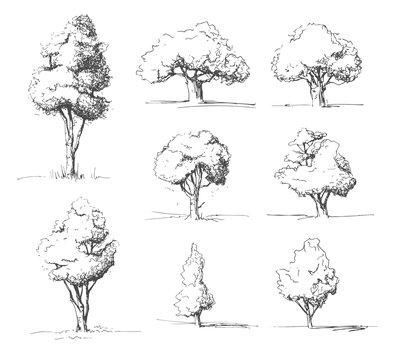 Tree sketches set