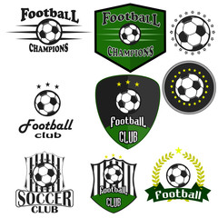 Professional sports logo football