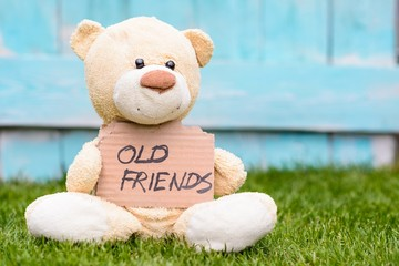 Teddy bear holding cardboard with information Old Friends