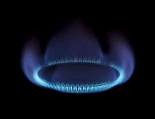 Burning gas stove on black background