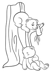 Coloring pages. Wild animals. Two little cute baby bears.