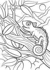 Coloring pages. Wild animals. Little cute chameleon sits on the tree branch.