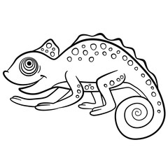 Coloring pages. Wild animals. Little cute chameleon.