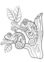 Coloring pages. Wild animals. Two little cute chameleon.