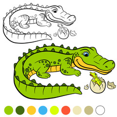 Coloring page. Color me: alligator. Mother alligator with her little cute baby alligator in the egg.